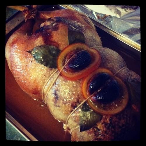 Four Bird Roast, Goose, Turkey, Duck and Guinea Fowl